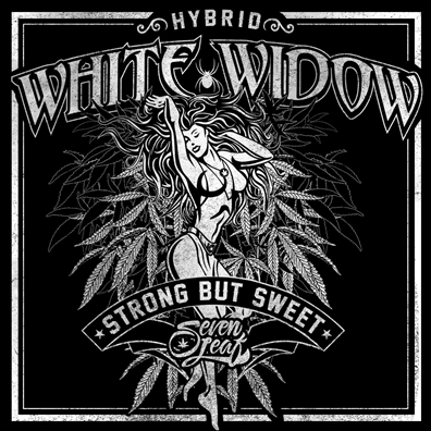 Seven Leaf White Widow Strain Sticker